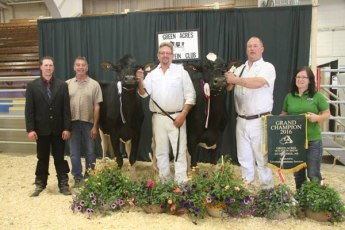 green acres holstein show