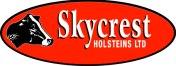 skycrest holstein logo