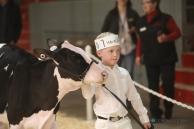 75277596-CalgarySpring17_Holstein_1M9A1463